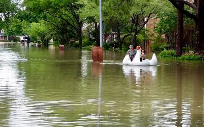 Midwife rides swan through floodwaters to deliver baby