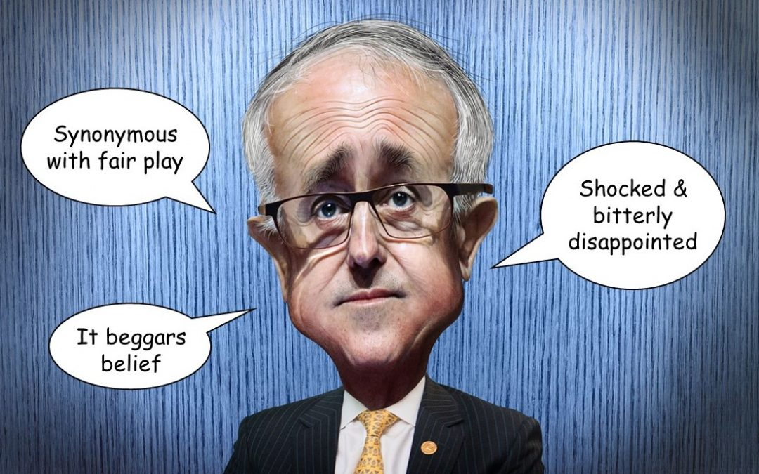 What would you know about fair play, Mr Turnbull?